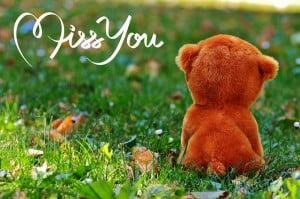 Vermissen-Liebe-Freundschaft-Tier